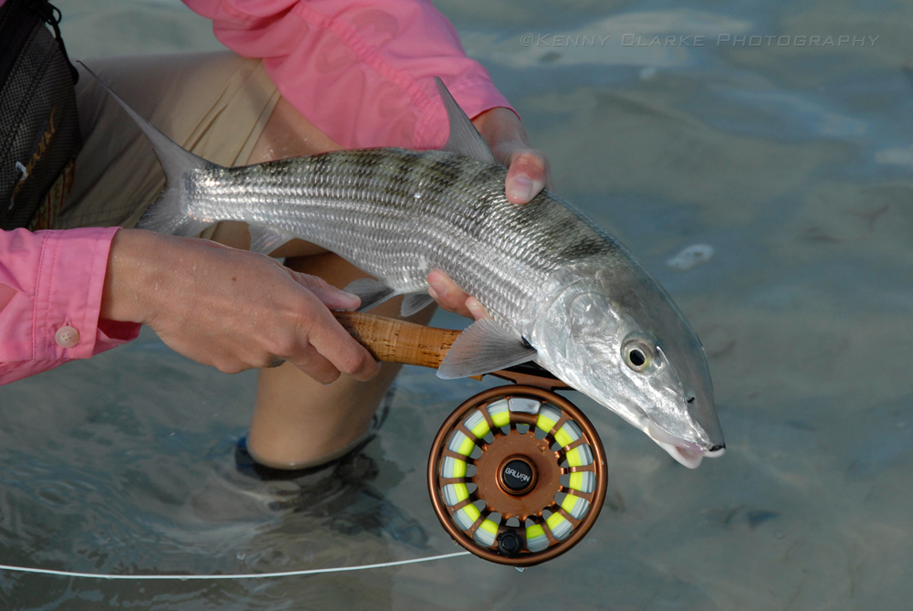 ... , Inspired Photography, Artwork, and Writing » SALTWATER FLY FISHING